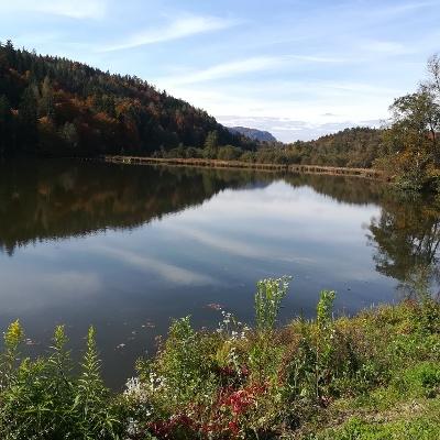 Großer Treimischer Teich mit Blick nach Westen - am Weg zum Stift Viktring