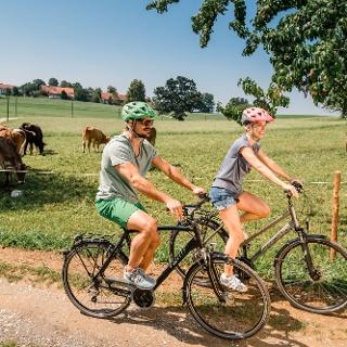 Radeln vorbei an Weilern und Dörfern.