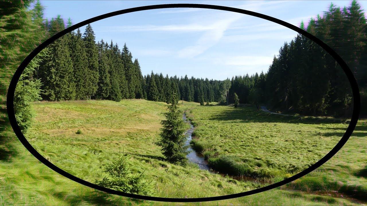 Die DEFINITIV schönste Wanderung des Erzgebirges ??? Das Schwarzwassertal bei Pobershau