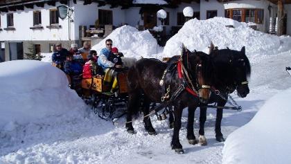 Pferdeschlittenfahrt in die Gsengalm