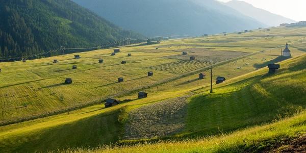 Dorfer Felder, Obertilliach