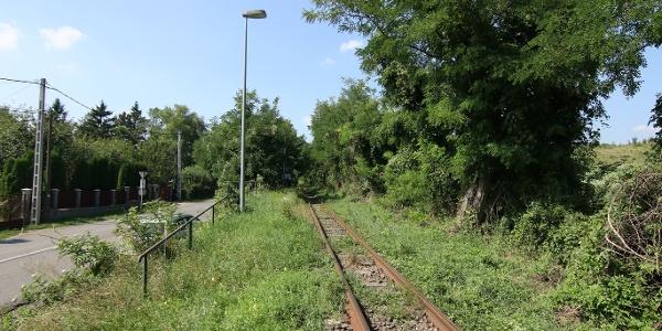Transzbörzsönyi kisvasút (Malomkert megállóhely)