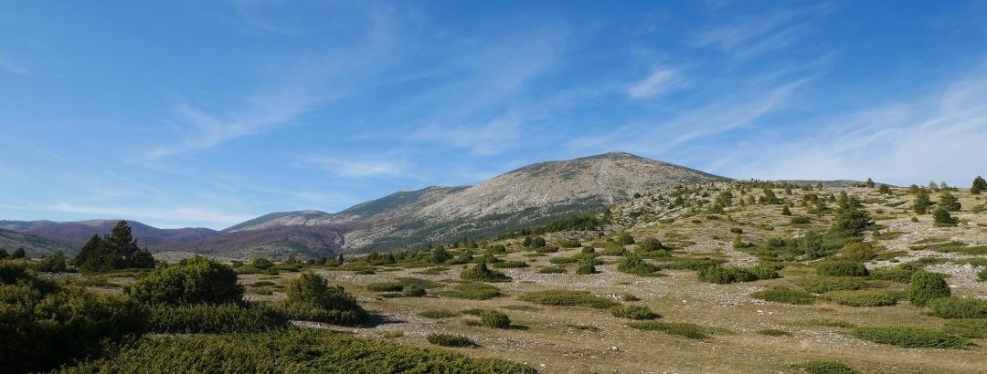 Blick auf das Farbenmeer des Blidinje Naturparks in Bosnien und Herzegowina