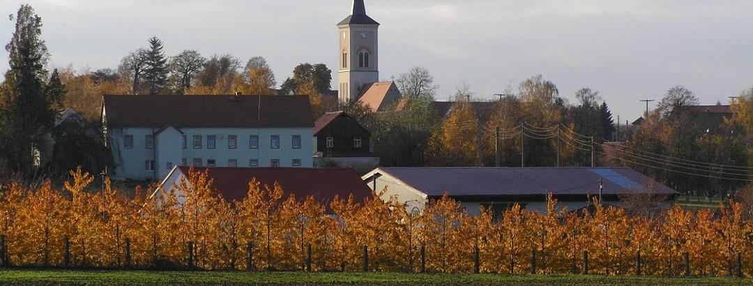 Ortsansicht Naustadt mit Kirche