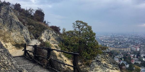 Sas-hegy