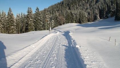gewalzter Winterwanderweg zur Lenggrieser Hütte