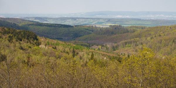 Kilátás északra, a Lajta-hegység felé a Magas-bércről