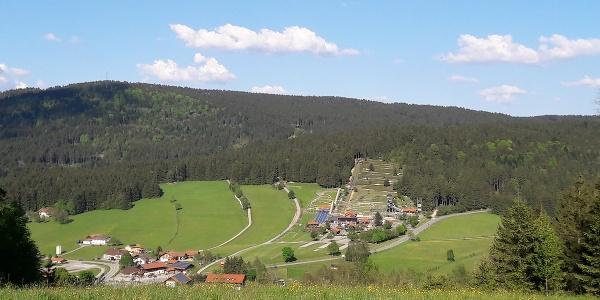 Blick nach Grün, Sommerrodelbahn und Pröller