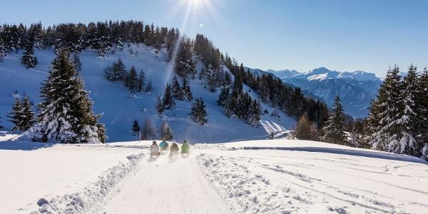 Schlittelweg Mutta - Südhang - Feldis