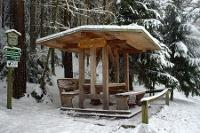 Foto Brennnesselhütte
