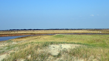 Durch einen Durchbruch mit dem Strand verbunden, hat sich hinter der Dünenkette einen Lagune gebildet.