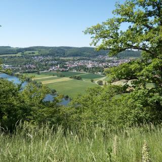 Sicht  vom Schreckberg auf Obrigheim