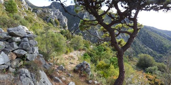 Wanderung Cañada del Infierno
