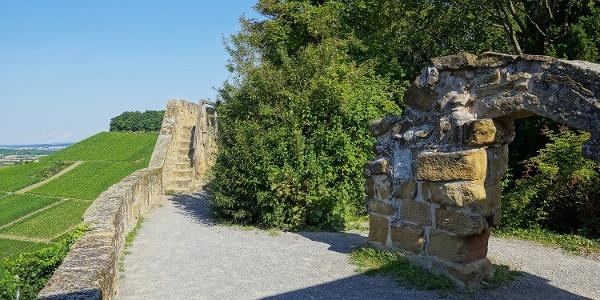 Burgruine Weibertreu | Weinsberg | HeilbronnerLand