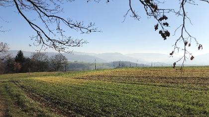 Ausblick von Strassdorf