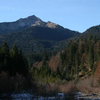 Scheinbergspitze von Norden