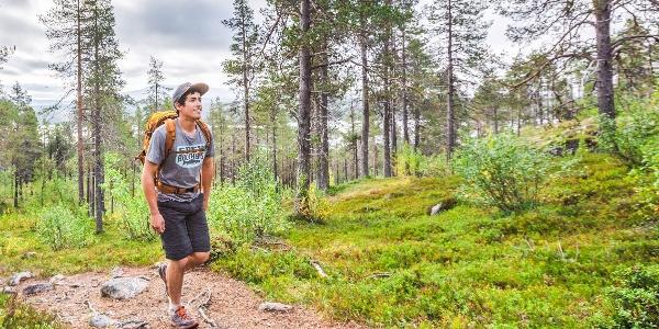 Jyppyrän polku on kansallispuiston lyhin kesäretkeilyreitti valokuvauksellisiin tunturimaisemiin. Polku on osin kivinen.