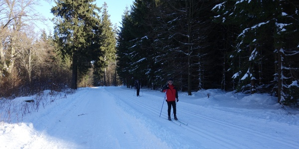 Winterwandern auf dem  Burgweg
