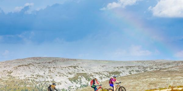 Maastopyörälijöitä nousemassa Kukastunturin huipulle sorastettua kesäretkeilyreittiä pitkin. Taustalla Lainiotunturi.
