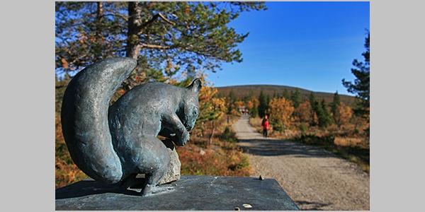 Pallastunturin Orava-avenue on lyhyt helppokulkuinen kesäretkeilyreitti, joka esittelee ympäristötaidetta.