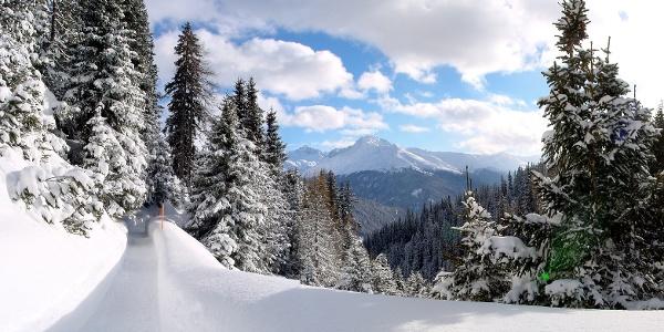 Winterwandern Schatzalp Davos