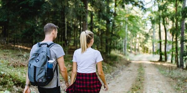 Wandern in schattigen Wäldern