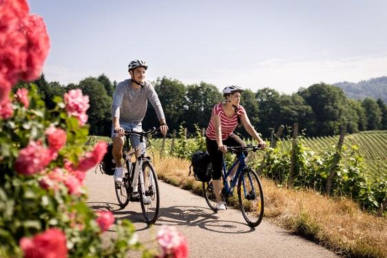 Badischer Weinradweg