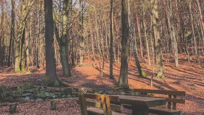 Picknickplatz an der Wolsel-Quelle