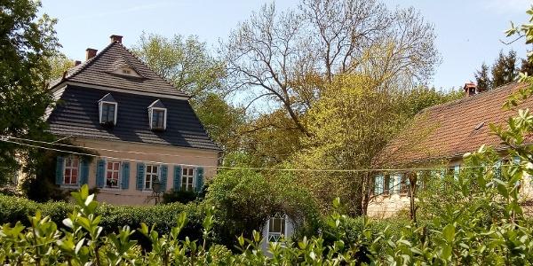 Rittergut Endschütz - Garten