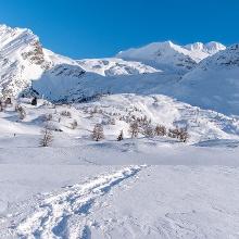 Schneeschuhlaufen Simplon