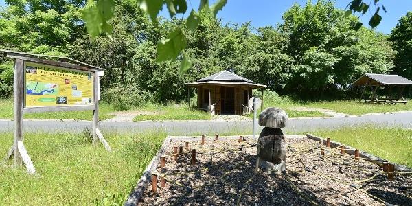 Pilzerlebnispfad in Gräfenwarth bei Schleiz