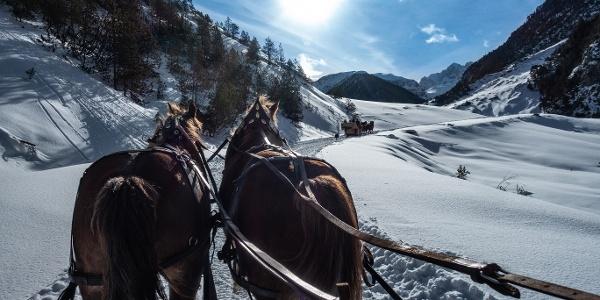 Schlittrada S-charl - Pferdeschlittenfahrten