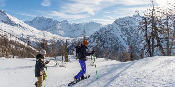 Schneeschuhlaufen Rothwald mit Blick auf den Simplonpass