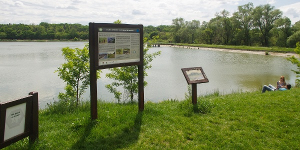 A Naplás-tó látképe a tavat kerülő tanösvényről