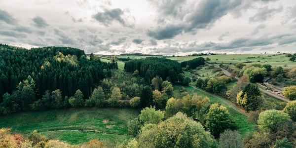 Panoramablick auf die Eifellandschaft hoch oben von Burg Reifferscheid