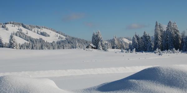 Idyllische Winterlandschaft am Hochhäderich