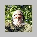 Profilbild von Jan Syperek