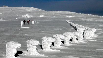 Stuhleck-Rettenegg: Unterwegs zum Gipfel nach dem Zaundurchgang