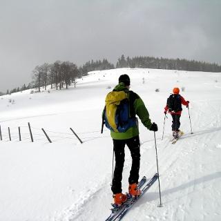 Hochstaff: Am unteren Rand der Weißenbachalm