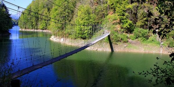 Hängebrücke am Lac de Montsalvens.