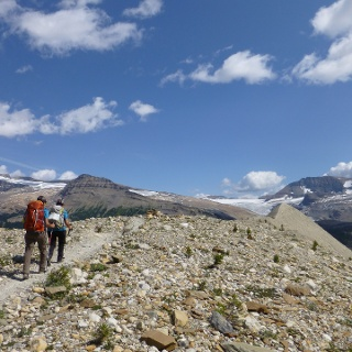 Am Iceline Trail im Yoho Nationalpark.