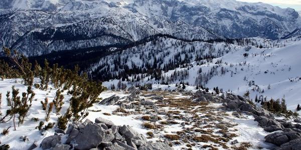 Kräuterin-Ost: Blick vom Graskogel nach S zum Hochschwab