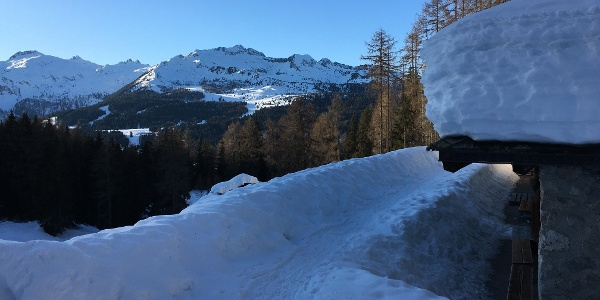 "Panorama from ""Malga Vaglianella"""