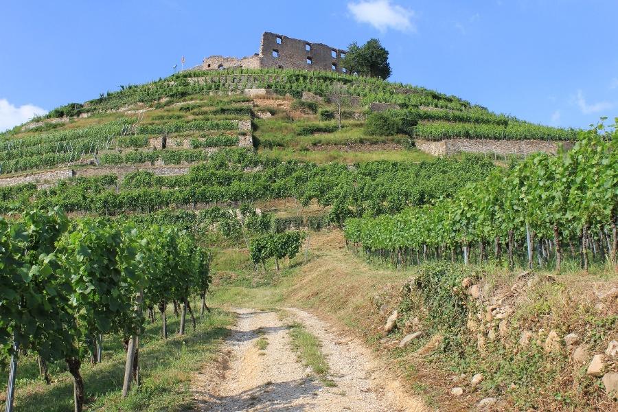 3.Rund um den Staufener Schlossberg