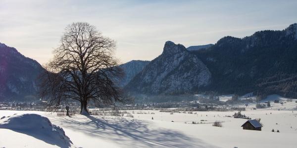 Winterwanderweg Pulvermoos