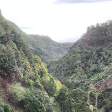 Blick vom Tal nach Ponta del Sol