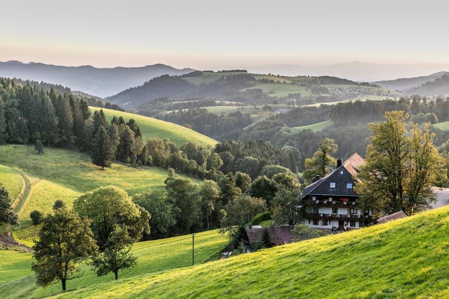 Breitnauer Berg-und Tal-Tour