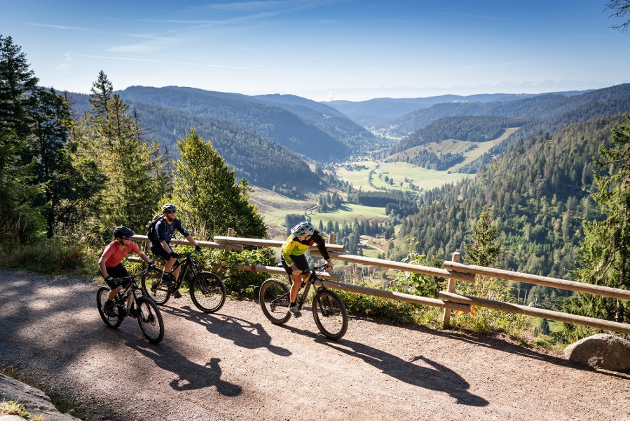 Hochschwarzwälder 4 Seen Tour