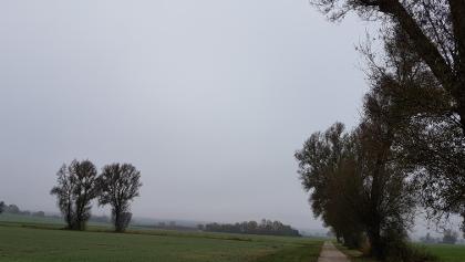 Morgennebel Pommersfelden