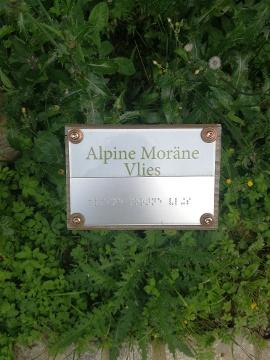 Alpine Moräne Vlies - Station